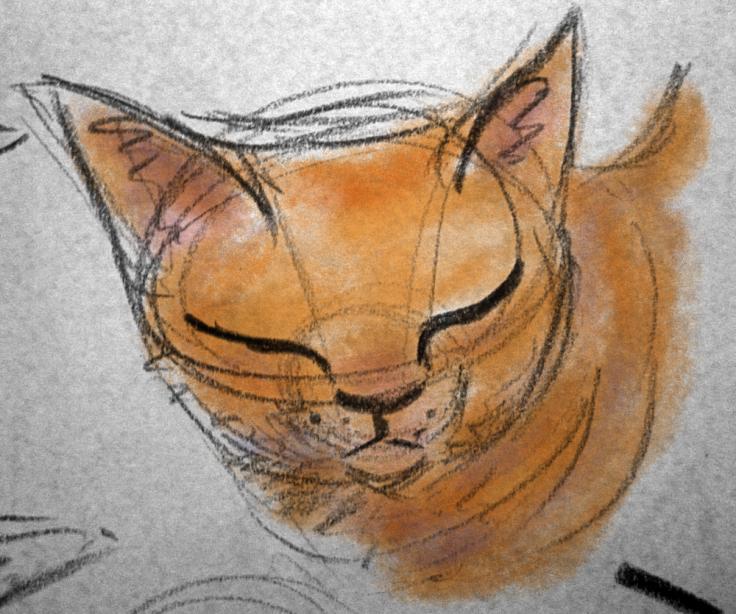 Cat_01 copy