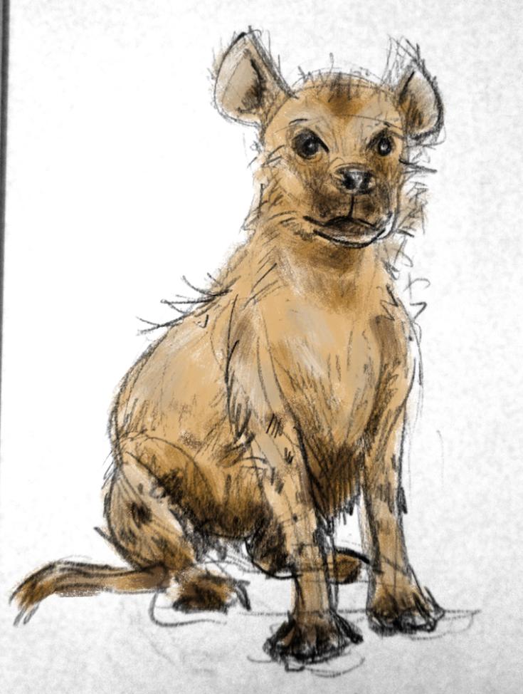 Hyena copy