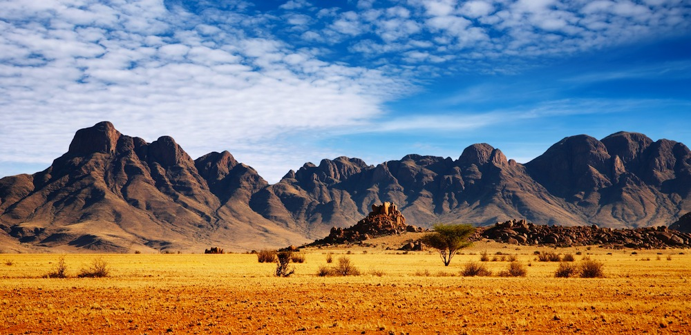Landscape_01_Image copy