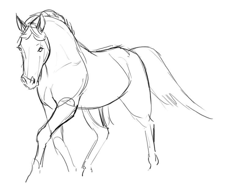 Horse_03