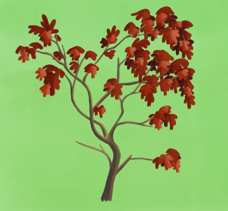 TreeSpring